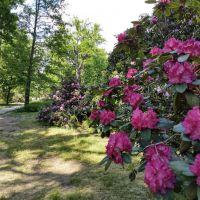 Park w Mosznej - Dolny Śląsk