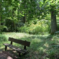 Niemodlin Zamek + Arboretum Lipno - Dolny Śląsk