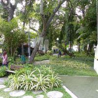 Sultan Park -  Male - Malediwy