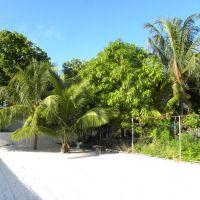 Zieleń Guraidhoo - Malediwy