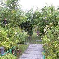 Park Prezydencki - Male - Malediwy
