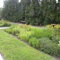 Ogród botaniczny - Poznań
