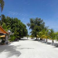 Zieleń Maafushi - Malediwy