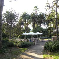Villa Amelia - Barcelona