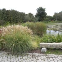 Arboretum Bolestraszyce - Podkarpacie