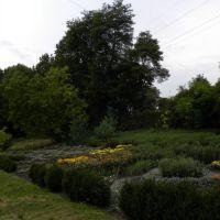 Ogród Botaniczny - Lwów