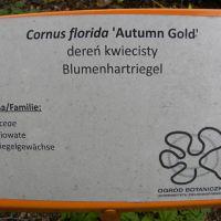 Zielonogórski Ogród Botaniczny
