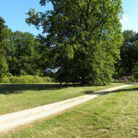 Park Kromlau - Saksonia