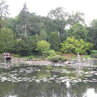 Park Szczytnicki   Ogród Japoński    Wrocław