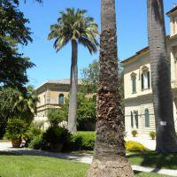 Ogród Botaniczny - Pisa