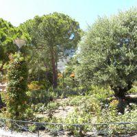 Ogród księżnej Grace