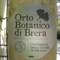 Ogród Botaniczny Brera - Mediolan