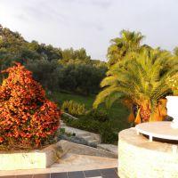 Castle Resort & Spa Hotel Sarigerme - Turcja