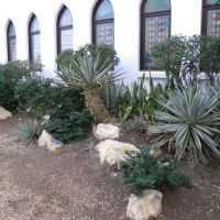 Ogród Bait Al Zubair - Muscat - Oman