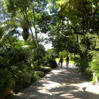 Parco Idrotermale del Negombo - Ischia - Campania