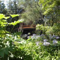 Giardini La Mortella - Ischia - Campania