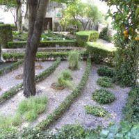 Giardino della Minerva - Salerno - Campania