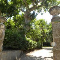 Villa Aldobrandini - Frascati - Lacjum