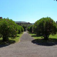 Villa Hadriana - Tivoli - Lacjum