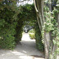 Castello Ruspoli - Vignanello - Lacjum