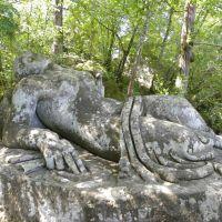 Sacro Bosco di Bomarzo - Lacjum