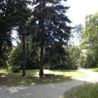 Ogród botaniczny w Wiedniu