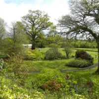 Border Hill - Anglia