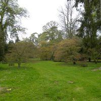 Westonbirt - Anglia