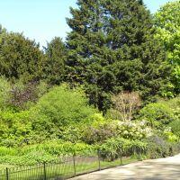 St. James Park - Londyn - Anglia