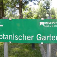 Ogród botaniczny w Salzburgu - Austria