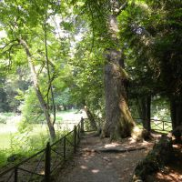 Villa Reale - Monza - Lombardia