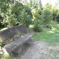 Parco delle Camelie - Locarno - Szwajcaria