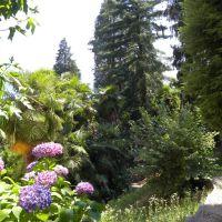 Parco Monte Verita - Ascona - Szwajcaria