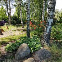 Arboretum Machowskie