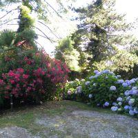 Park K. Adenauera - Villa La Collina - Tremezzina - Lombardia