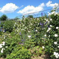 Giardino della Rosa - Ronzone - Trentino