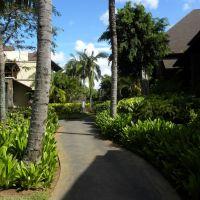 Westin Park - Turtle Bay - Mauritius