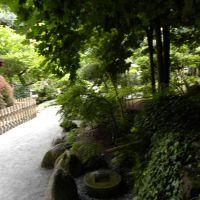 Ogród japoński - Jarków - Dolny Śląsk