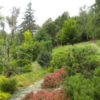 Villa Elise Park Pension - Stronie Śląskie - Dolny Śląsk
