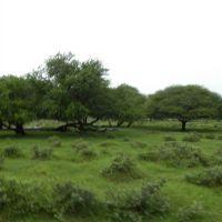 Casela Park - Mauritius