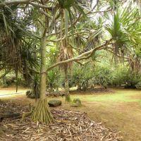 La Vanille Park - Mauritius