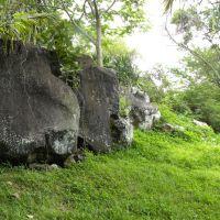 Maritim Park - Balaclawa - Mauritius