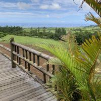 Posiadłość Bois Cheri - Mauritius