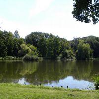 Arboretum Kórnickie - Wielkopolska