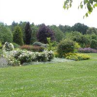 Arboretum Wojsławice - Dolny Śląsk