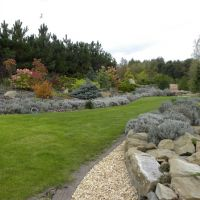 Ogród przy skalnej skarpie
