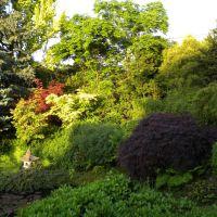 Ogród inspirowany orientem