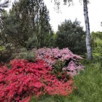 Ogród Pogórz