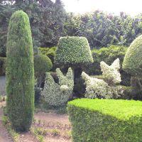 Madeira Botanical Garden